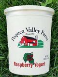 32oz Raspberry Yogurt